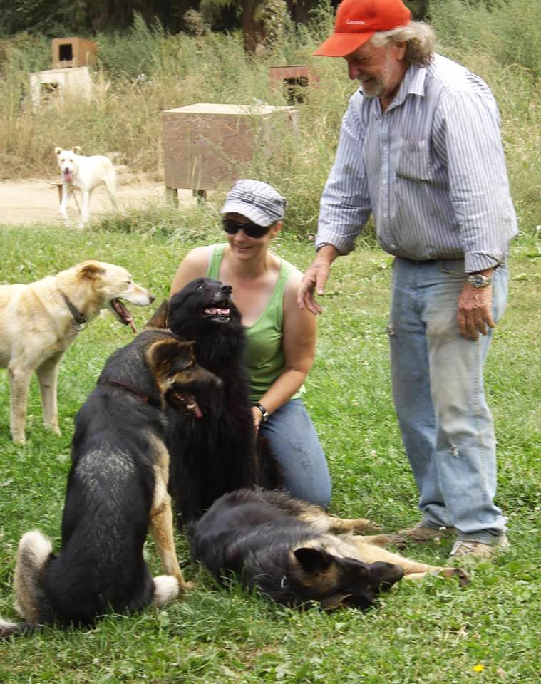 Lavorare con gli animali con wep puoi farlo con i cani for Lavorare con i cani